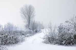 cold-snow-road-landscape